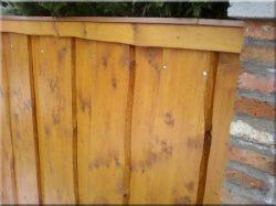 Rustikale Holzzäune