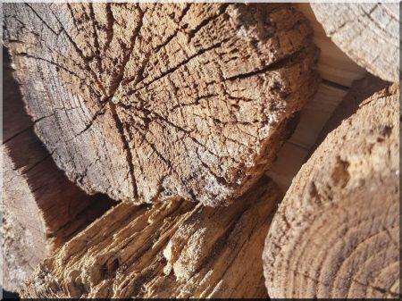 Antik akác karika dekoráció, 8 - 12 cm