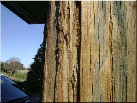 Képek bontott faanyagokról