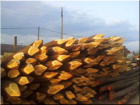 Holzpfähle, Angespitzt
