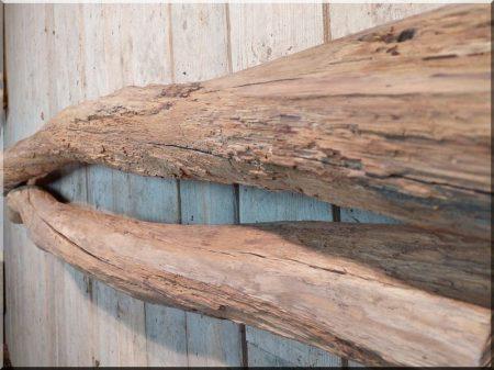 Acacia logs, driftwood