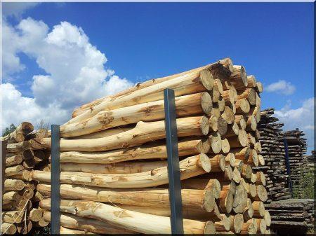 Debarked log, 10 - 14 cm