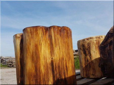 Acacia logs