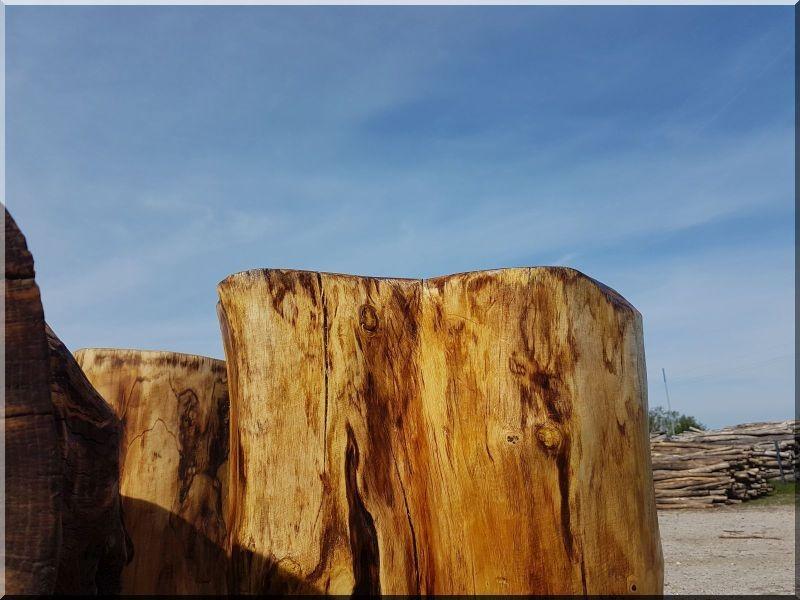 lindenholz, holzstämme