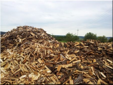 Thin refuse timber from acacia