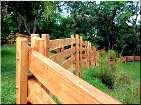 Pine fence plank