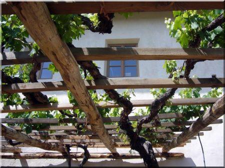 Dachkonstruktionen aus Holzbalken