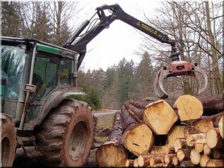 Erdőkitermelés