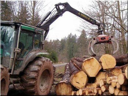 Erdőkitermelés -
