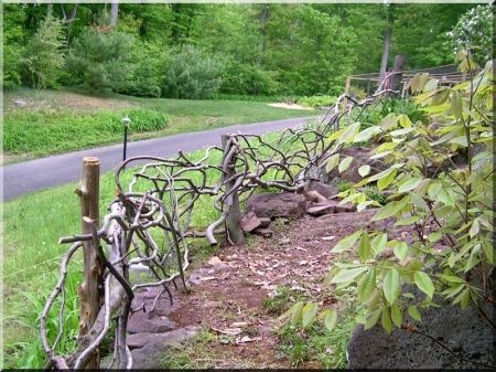 Görbe kerítéselemek akác fából -