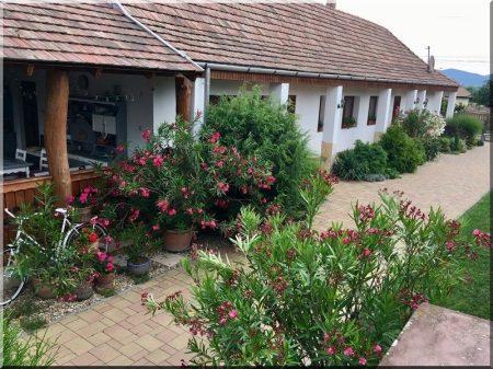 Gardens, courtyards
