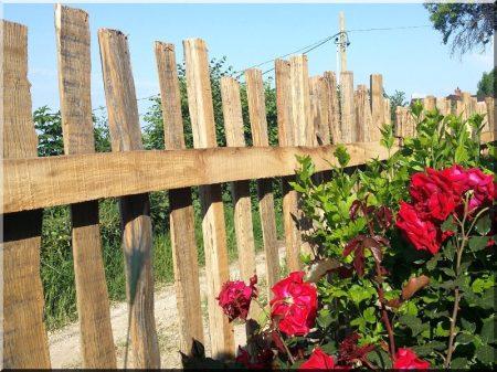 Antic fence