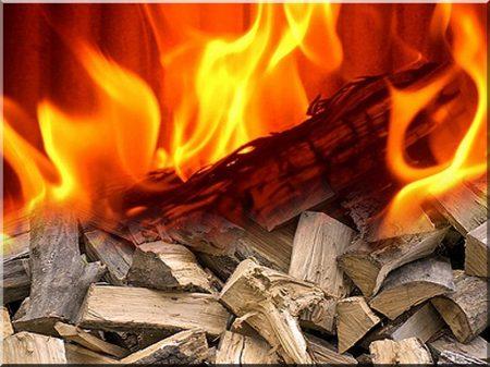 Tűzifa -