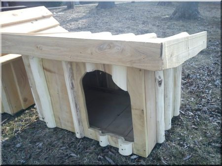 Chenil à demi toit en acacia, taille II