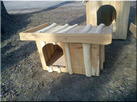 Chenil à demi toit en acacia, taille III