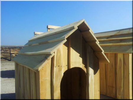 Locust dog-kennel size III