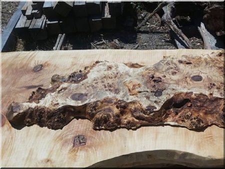Table top (poplar)