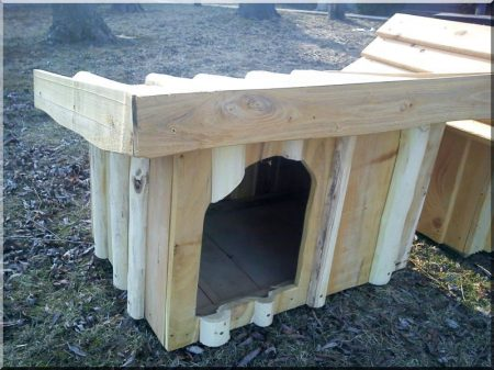Locust dog-kennel size V, lean-to