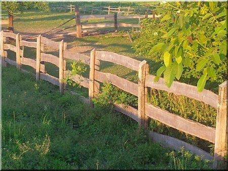 Acacia horse pen planks