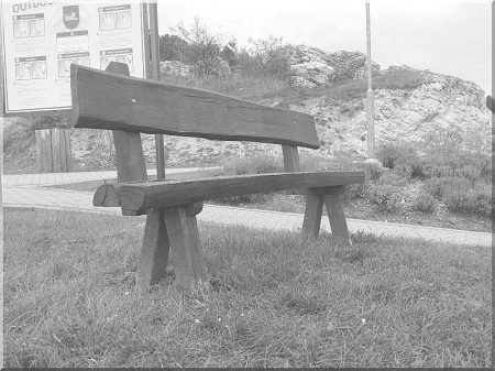 Log furniture from locust with back-rest