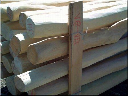 Holzpfahl, geschält und geschliffen