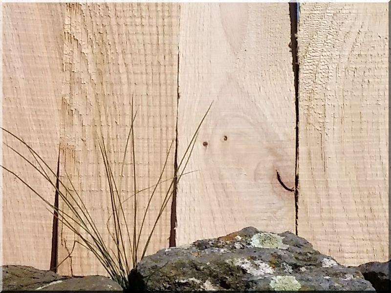 Fa ágyásszegély, 25 cm- es