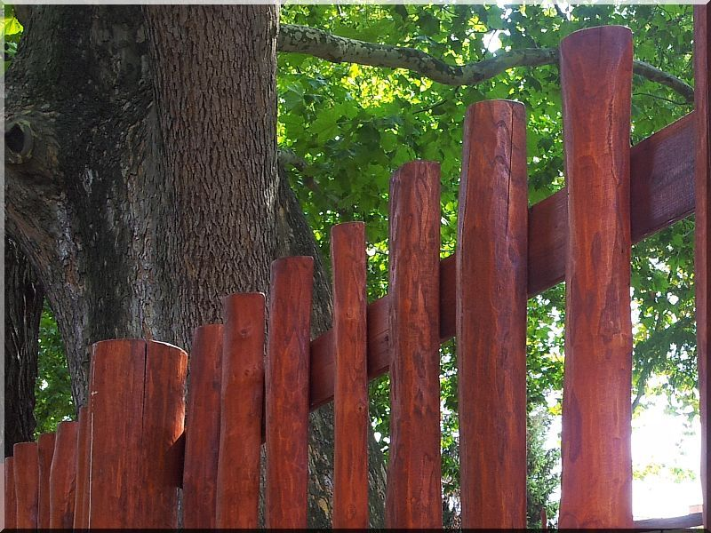 Felezett akác kerítéselem, 8 - 10 cm