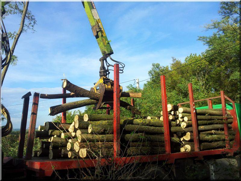 Rönkszállítás, fa szállítás