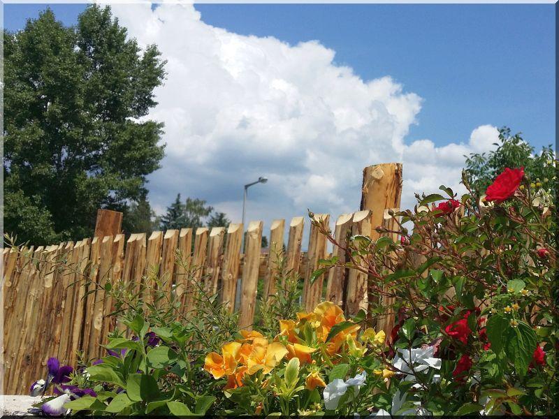 Kerítés kérgezett fenyőfából -